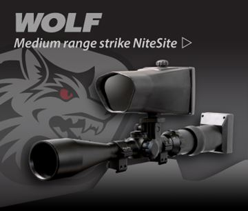 Picture of NITESITE WOLF