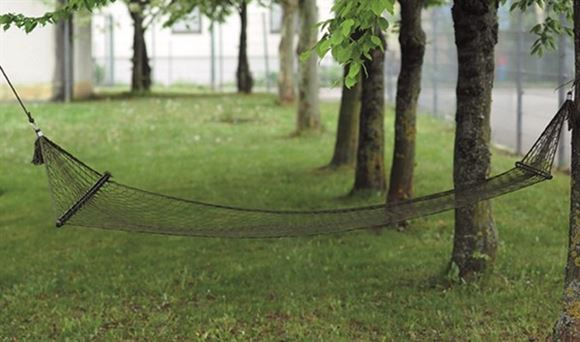 Picture of OD HAMMOCK WITH SPREADER BARS